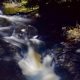 Vortex by Santford Overton - Landscapes Waterscapes ( landscapes, adventure, places, waterscapes, leaves, light, longexposure, river, travel, water, colors )
