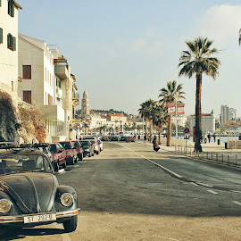 Vw beetle Split by Marko Dragović - City,  Street & Park  Street Scenes ( car, croatia, split, beetle, street photography )