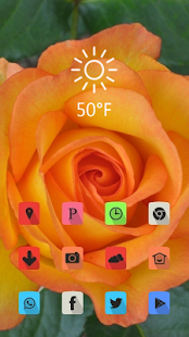 Beautiful yellow flowers theme - screenshot