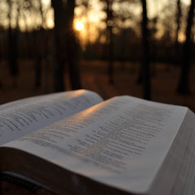 Bible and the Sunset  by Sawyer Jones Photography  - Artistic Objects Other Objects ( religion, christian, catholic, nature, church, sunset, bible, landscape, nikon, woods, photography )