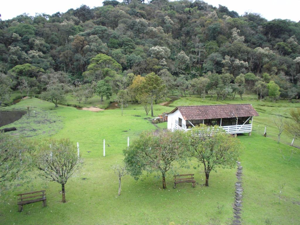 Chácara à Venda - Borda do Campo