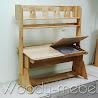 Детская мебель: ПАРТА ДВОЙНАЯ С ПЕНАЛАМИ, СТУЛЬЯМИ, НАДСТРОЙКОЙ и стеллажом