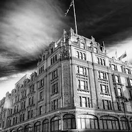 Harrod's by Dustin Robnett - City,  Street & Park  Historic Districts ( luxury, england, black and white, historical, street photography )