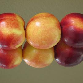 nektarinler by Salih Sarıcaoğlu - Food & Drink Fruits & Vegetables ( meyve, yansıma, pembe, sarı, kırmızı )