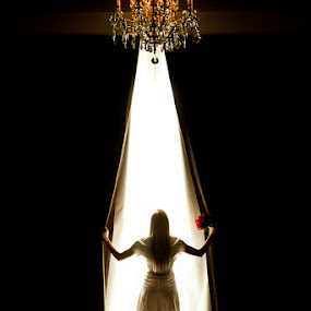by David Terry - Wedding Bride ( bridal, jsmb, silhouette, wedding, bride, joseph smith memorial building )