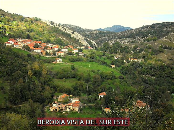 Berodia