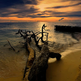 A part of the journey at Samalona Island, Makassar South of Sulawesi by Rifa PhotoArt - Novices Only Landscapes