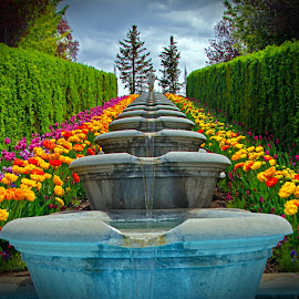 by Randall Roesner - City,  Street & Park  Fountains ( high quality, in focus )