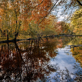 Fall Reflections by Jon Kinney - Landscapes Waterscapes