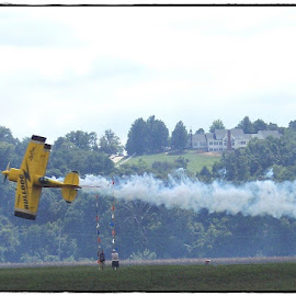 Bulldog by Sandy Stevens Krassinger - Transportation Airplanes ( airplane, bi-plane, yellow, transportation, sidways, pass,  )