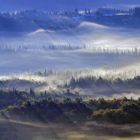 Konavoska magla by Miho Kulušić - Landscapes Mountains & Hills ( hills, foggy, fog, forest, shadows,  )