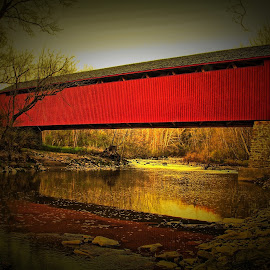 by Darrell Tenpenny - Buildings & Architecture Bridges & Suspended Structures