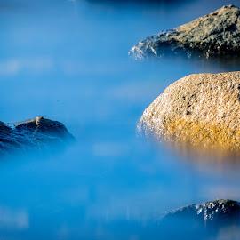 Morgen kaldt sjøen og solskinn. by Dag Hafstad - Nature Up Close Other Natural Objects