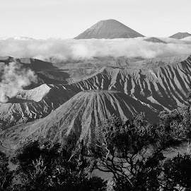 Bromo by Harry Taib - Landscapes Mountains & Hills ( national park, volcano, tengger, indonesia, bromo )