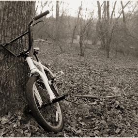 BIKE RIDES by Kaleb Kimmelman - Artistic Objects Other Objects ( fashion, old, bike, bikes, forest, woods )