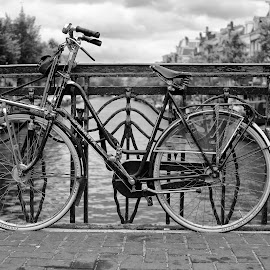 by Predrag Spasic - Transportation Bicycles