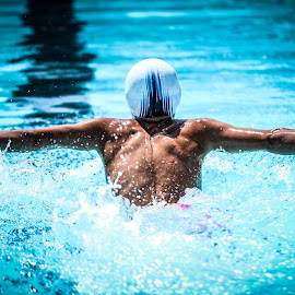 Flying away!!! by Ray Welgosh - Sports & Fitness Swimming ( butterfly, fly, swim, swimming )