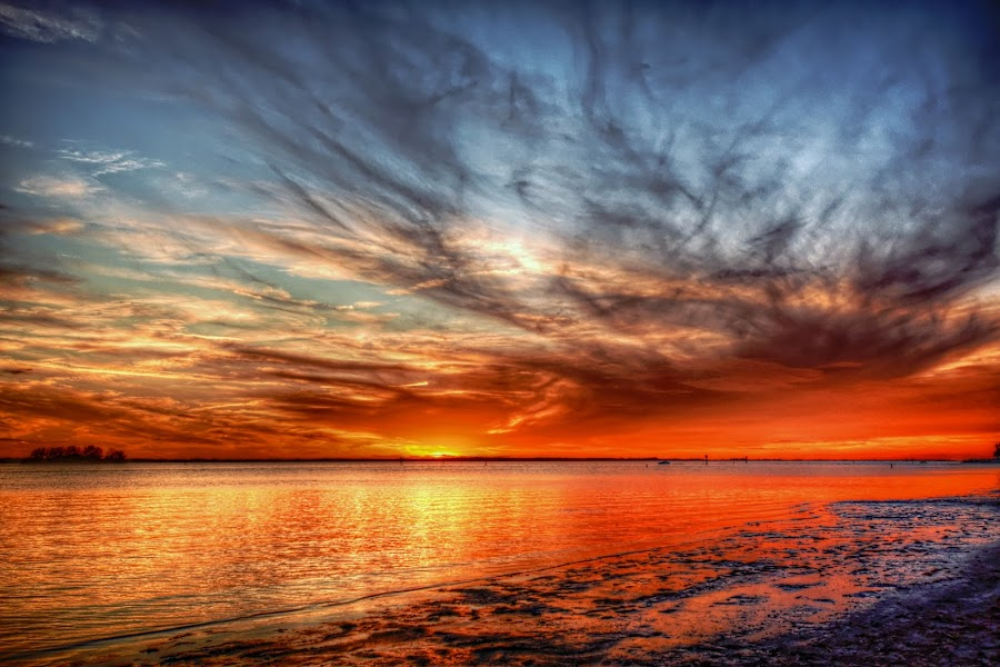Dunedin Causeway by Edward Allen - Landscapes Sunsets & Sunrises (  )