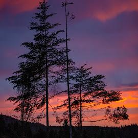 End Of Day by Debbie Slocum Lockwood - Landscapes Sunsets & Sunrises