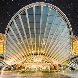 Lisboa Oriente Train Station at Night by Marcin Frąckiewicz - Buildings & Architecture Public & Historical ( train station, night, lisbon, portugal, lisboa )