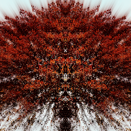 Mile High Fall  by David Ryals - Digital Art Abstract