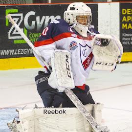 The catch by Yves Sansoucy - Sports & Fitness Ice hockey ( hockey, goalie, goal, save, puck, ice, net )