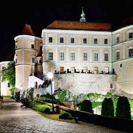 Mikulovský zámek v noci by Petr Olša - Buildings & Architecture Architectural Detail