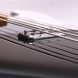 Silent Music by Isabelle Dionne - Artistic Objects Musical Instruments ( music, detail, bass, guitar, electric guitar )