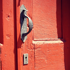 Door by Becki Barnard O'Connor - Buildings & Architecture Architectural Detail ( handle, st elmo, wood, metal, door )