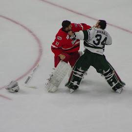 Goalie fight  11 by John Pratt - Sports & Fitness Ice hockey ( wild, goalie, hockey, fight, checkers, ice )