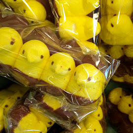 Hi Peeps! by David Stone - Food & Drink Candy & Dessert ( easter candy, easter, candy, yellow, packaged candy, peeps, yellow peeps )