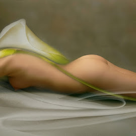 BENEATH THE SHEETS by Carmen Velcic - Digital Art People ( abstract, body, girl, nude, woman, she, digital )