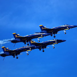 Wheels Down by Raphael RaCcoon - Transportation Airplanes ( blue, airplane, transportation, jet, air show )