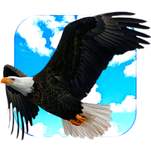 Flying Eagle Live Wallpaper
