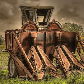 Sugarcane Harvester by Ron Olivier - Digital Art Things ( sugarcane harvester,  )