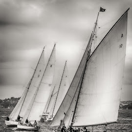 Historic yachts racing, Auckland Harbour. by Graeme Hunter - Black & White Landscapes