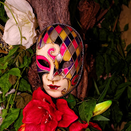 Mask ... by Joseph Muller - Artistic Objects Clothing & Accessories ( costumes, elegance, colors, art, tradition, venice, patience, parades, doges cited, italy, characters,  )