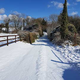 Country Road by Jacky Quirke - Landscapes Weather ( fence, sky, ireland, blue, snow, sunshine, road, shadows )