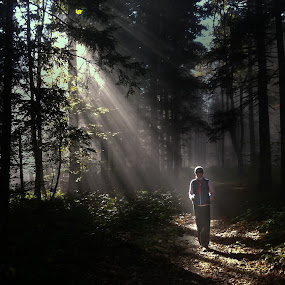 by Alan Grubelić - Landscapes Forests