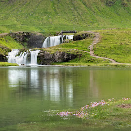 Waterfalls and Reflections by Phyllis Plotkin - Landscapes Waterscapes ( iceland, waterfalls, green, reflections, flowers )