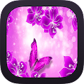App Butterfly Wallpapers apk for kindle fire