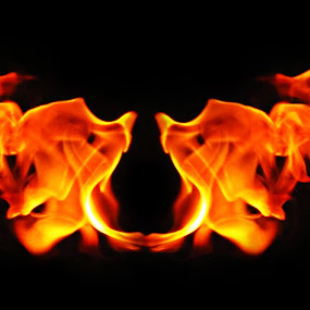 Fiery Encounter  by Sautrik Dutta Mantrani - Novices Only Abstract