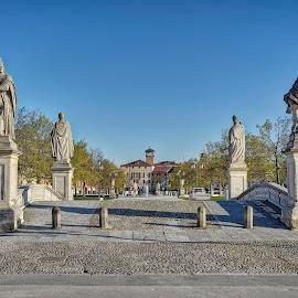 Prato Della Valle, Padova by Cristian Peša - City,  Street & Park  Street Scenes