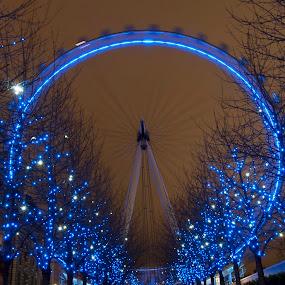 London Eye by Colin Strain - City,  Street & Park  Skylines ( london eye, south bank, london, blue, night, slow shutter, waterloo )