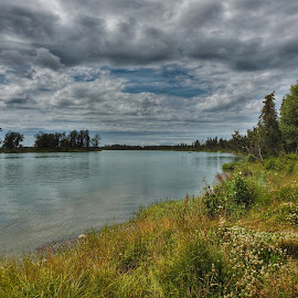 On The Kenai by Patricia Phillips - Landscapes Travel ( rivers alaska kenai, summer )