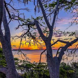 sunset by Taz Graham - Novices Only Landscapes