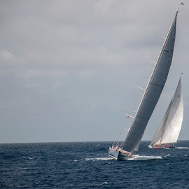 Classic Yacht Racing by Brian Sinnott - Sports & Fitness Watersports