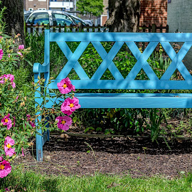 Take a Seat by Heather Ryder - Artistic Objects Furniture ( bench, blue, seat, flowers, garden )