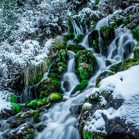 Waterfall by Joseph Callaghan - Landscapes Waterscapes ( water, winter, serene, snow, forest, new zealand )