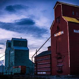Standing Tall by Luke Kowand - Landscapes Prairies, Meadows & Fields ( canada, alberta, grain elevator, grain, prairies, rail, canadian, nanton, train, industry )